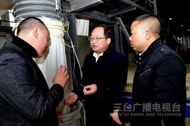 马辉:加快产业项目建设做大做优